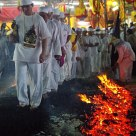 Devotees performing the walk of fire.